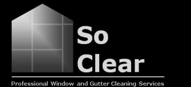 professional window and gutter cleaners bristol